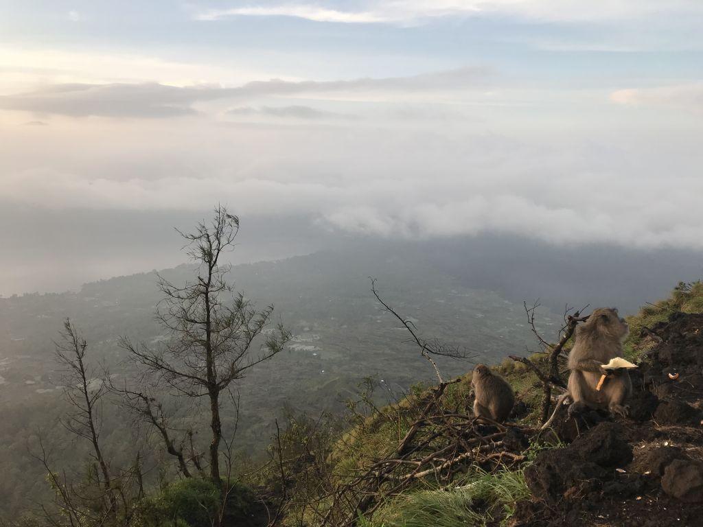 Batur Sunrise 15.02.2019
