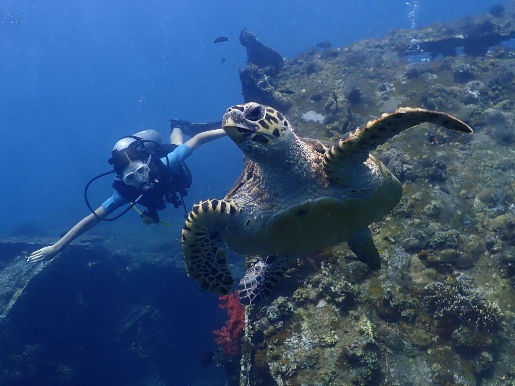 Diving 05.03.2019