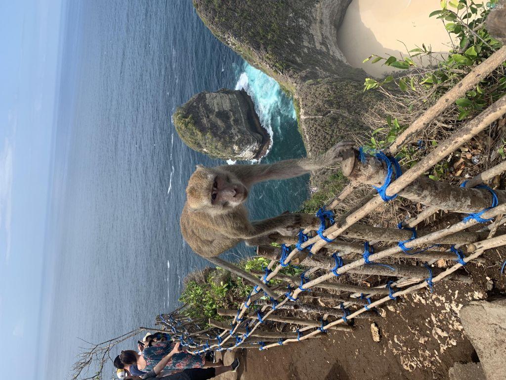 Nusa Penida Tours 04.11.2019
