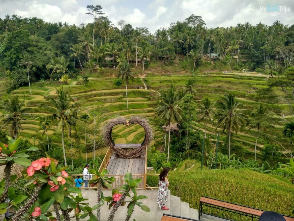 Ubud and bird park 06.12.2019
