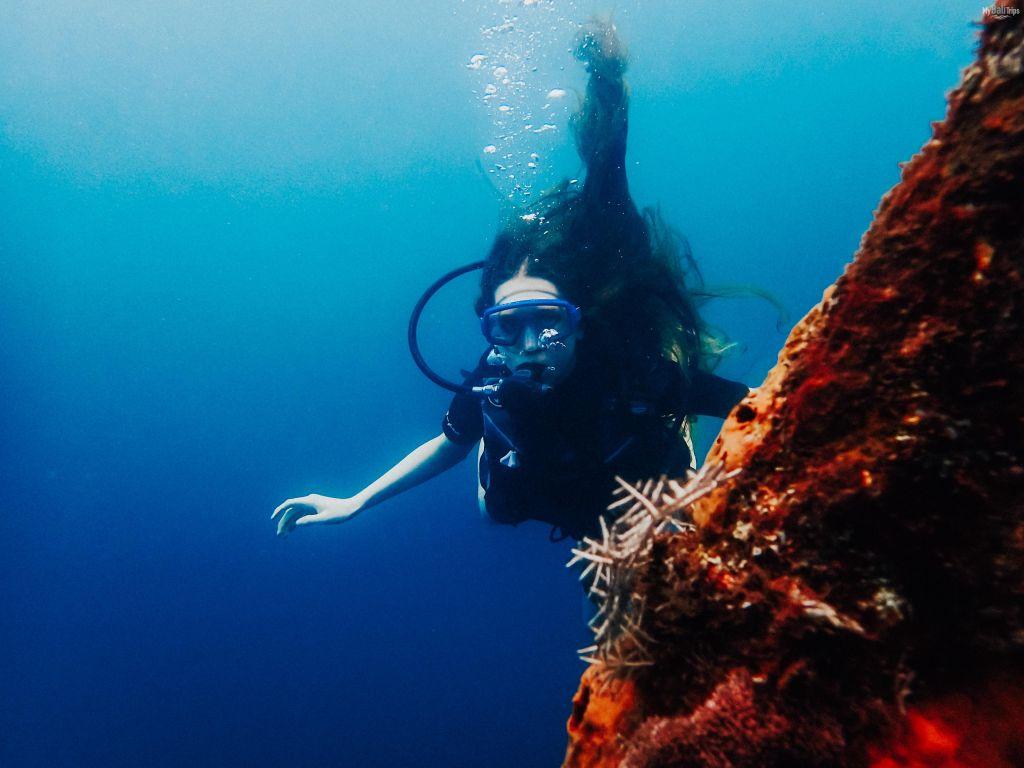 Diving 12.03.2020