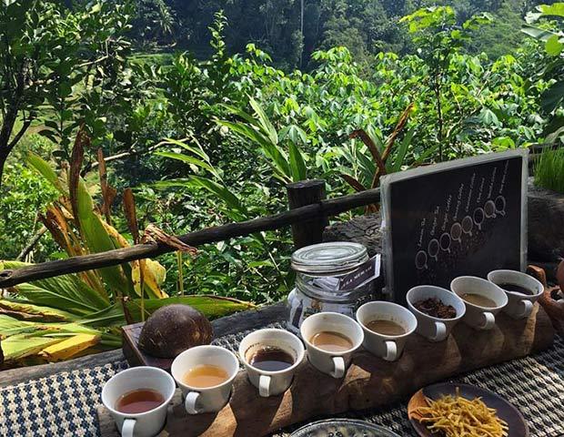 кофе бали