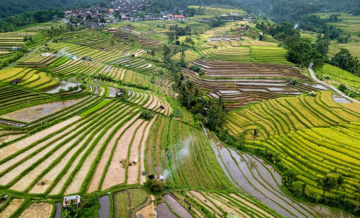 North of Bali