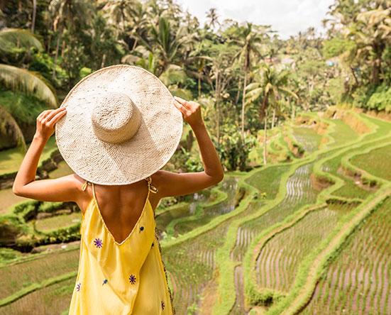 Рисовые террасы на Бали в ноябре
