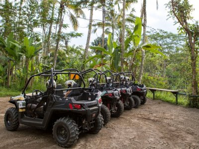 Buggy ride through the jungle   MyBaliTrips