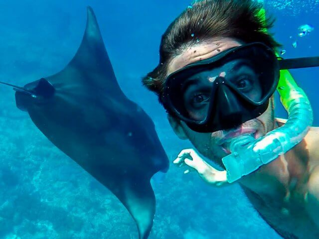 Snorkeling with Manta Rays in Manta Point | Nusa Penida trip